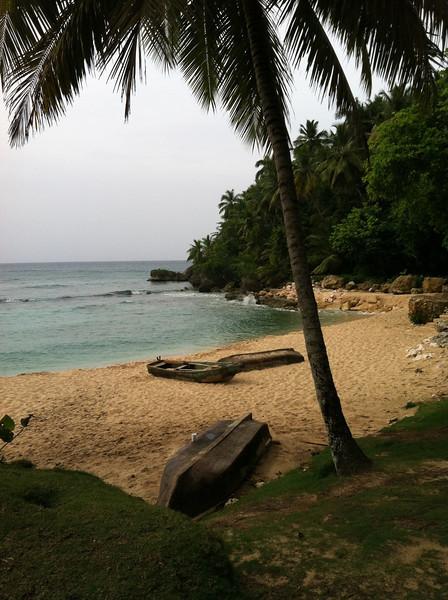 """""""Dominican Beach"""""""