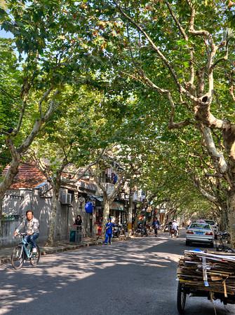 Street Scene Near Jing An Park