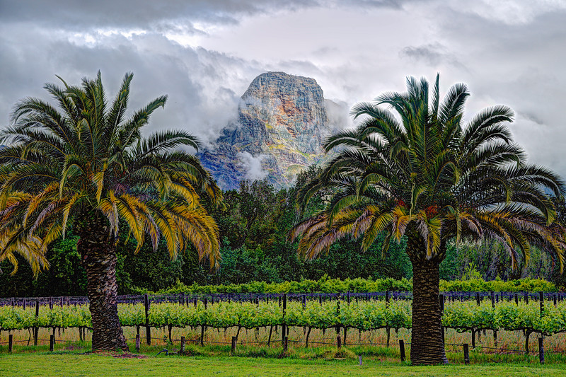 Allee Bleue Winery Surroundings, Franschhoek