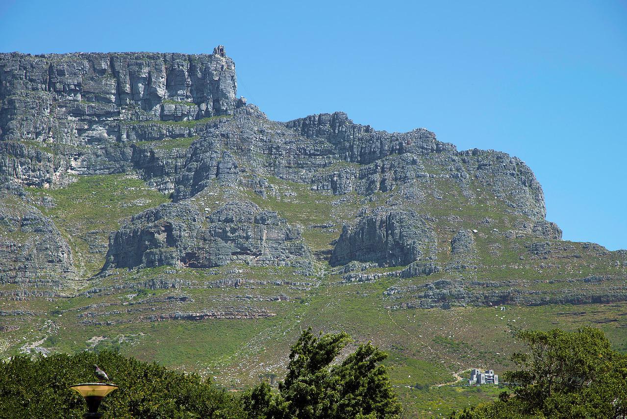Table Mountain (1085m)