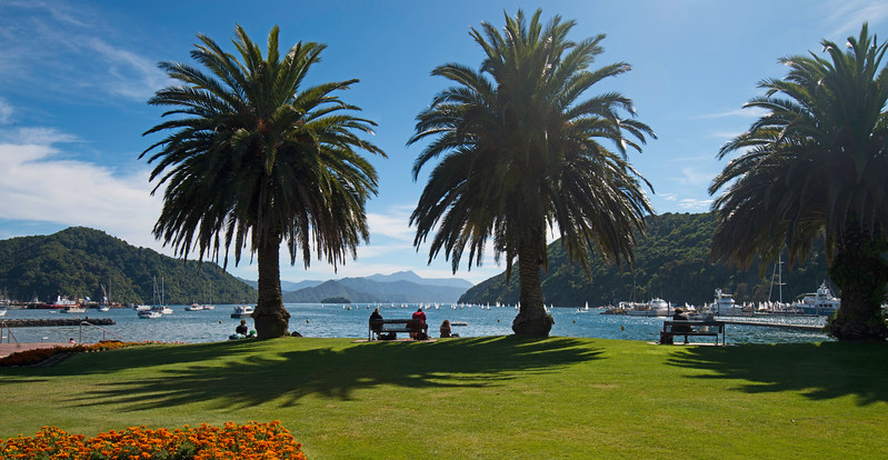 Picton Harbor, South Island of New Zealand