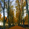 Fall in Kalmar, Sweden