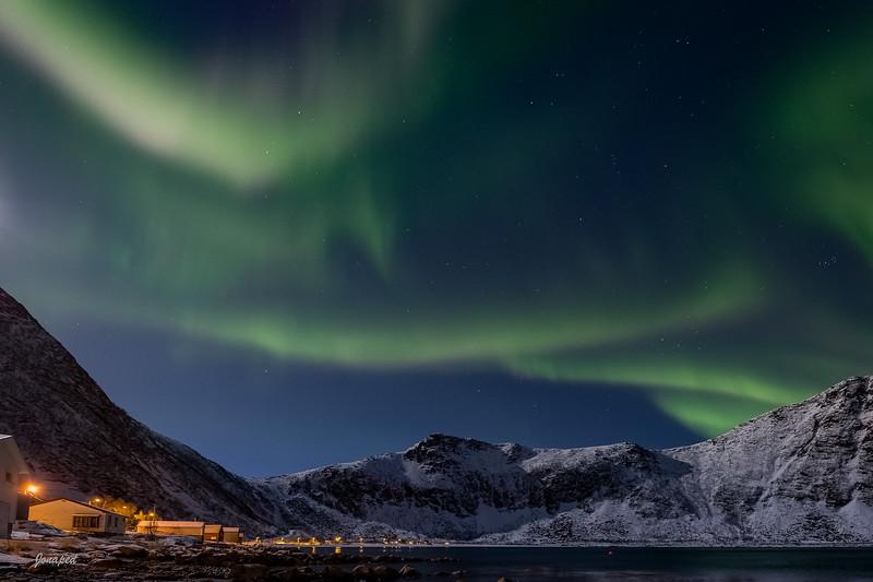 Steinfjord i Supermånelys