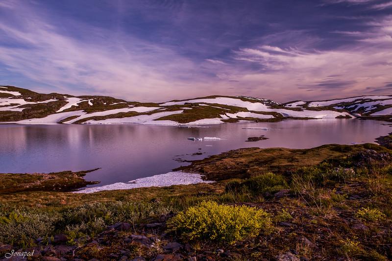Sommarnatt på Vikafjellet/Summer Night at Vikafjellet