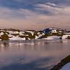 Summe Night at Vikafjellet/Sommarkveld på Vikafjellet