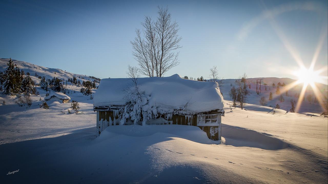 Fine vinterdagar :-)