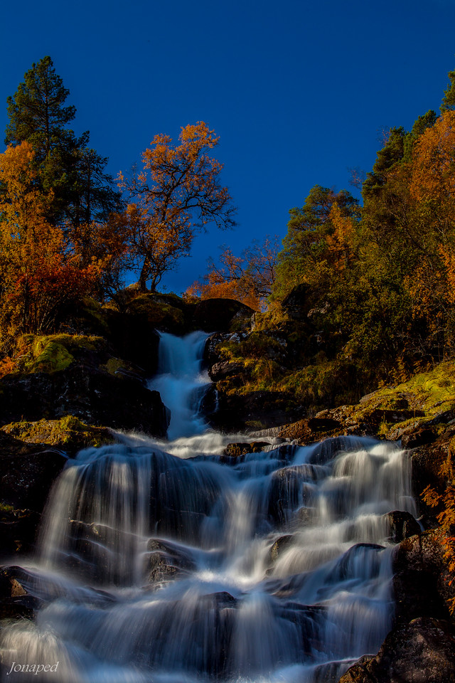 Autumn Colors/Haustfargar