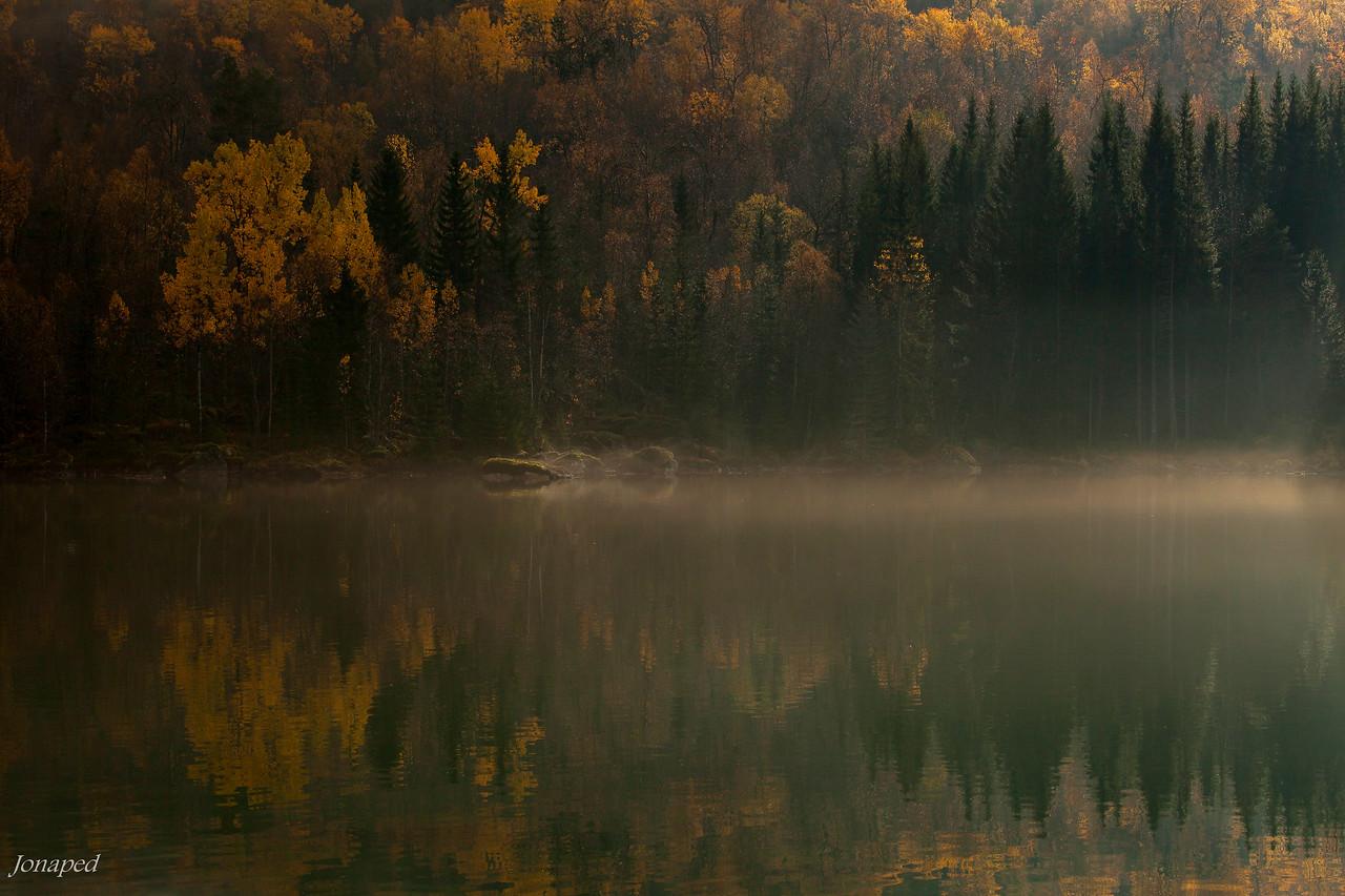 Haustmorgon ved Lonevatnet