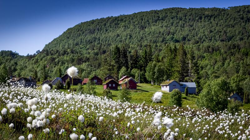 Sommar på Støylen