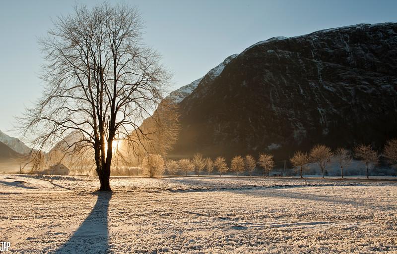 Winter Light at Byrkjelo
