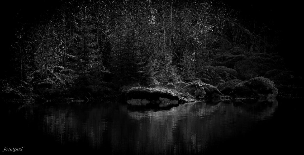 Ved Lonevatnet