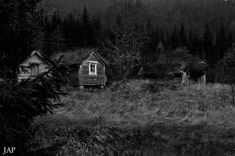 Vårstøylen til Fitjarane ein sein haustkveld<br /> In the woods a late autumn evening.