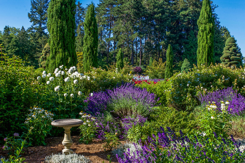Summer Garden Display