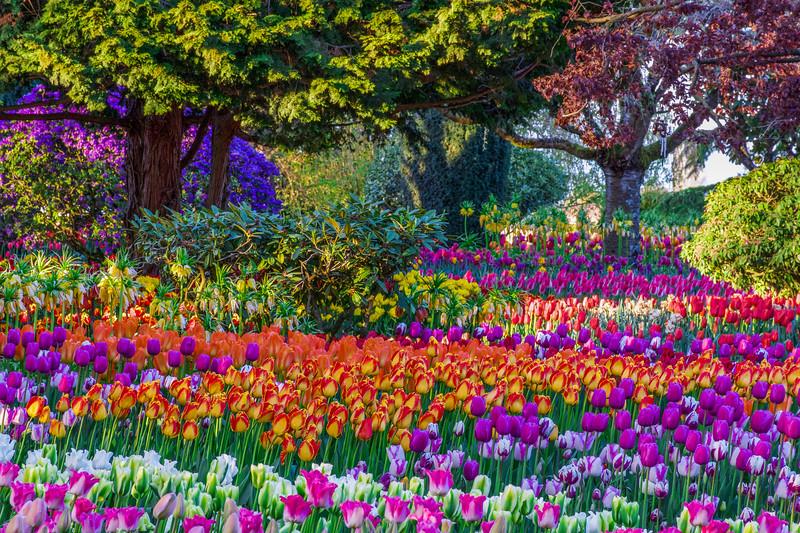 Monet Inspiration