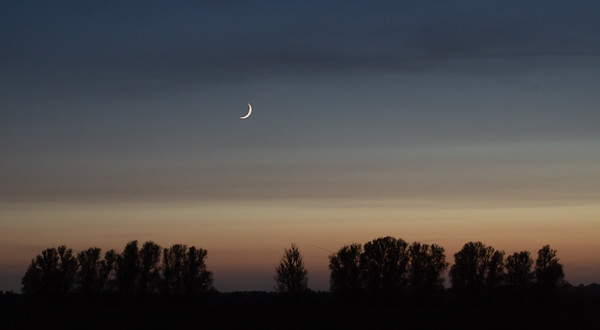 Crescent moon over Langridge Fen coppice