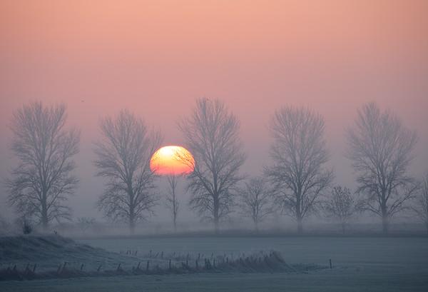 Sunrise over fenland fog