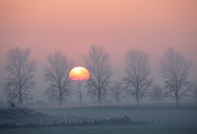 Sunrise over fenland fog