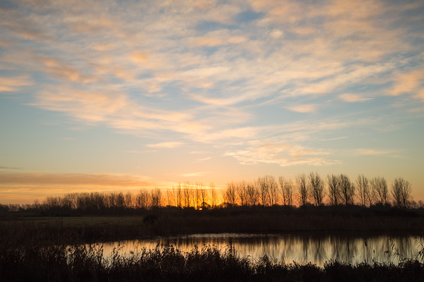 Sunrise at Hansen RSPB nature reserve