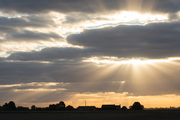 Crepuscular rays over The Causeway, Willingham