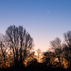 Crescent moon over Bare Fen at sunrise