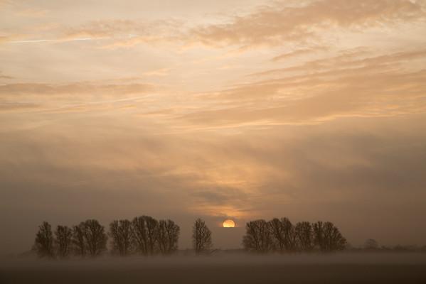 Fog-bank delayed sunrise at Bare Hill, Over, Cambridge