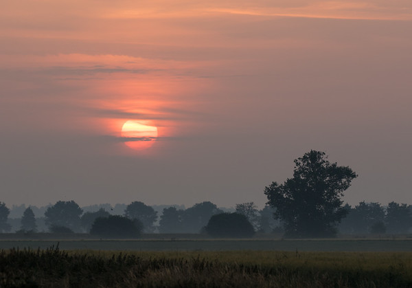 Misty summer sunrise - 22 June 2017