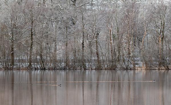Coniston Water dawn