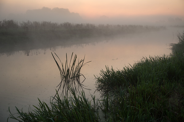 Misty morning on the Great Ouse - 1