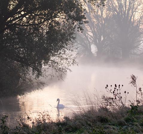 The return of autumn misty mornings
