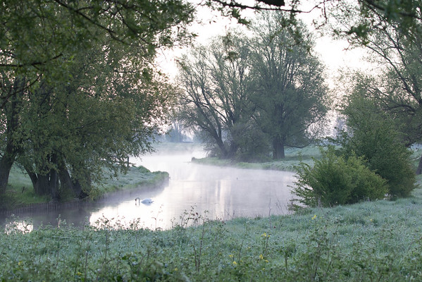 Misty May morning on the River Great Ouse