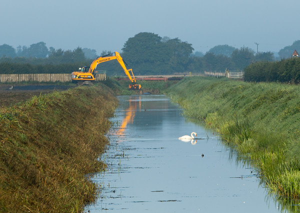 Reflections of form - swan necks and  diggers working on Queenholme Drain, Cambridgeshire