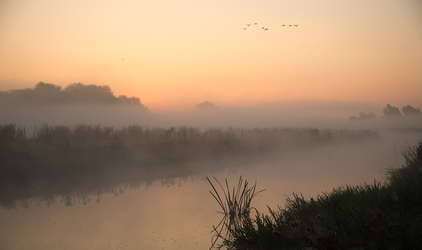 Misty morning on the Great Ouse - 2