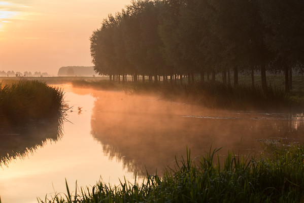 Mist rises above the River Great Ouse shortly after dawn