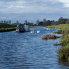 Winter life on the River Great Ouse