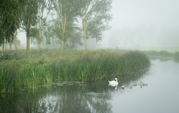 Misty River Great Ouse