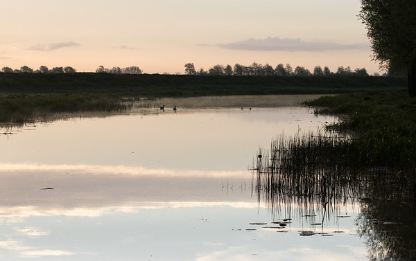 Early morning reflections on the River Great Ouse near the Causeway bridge.