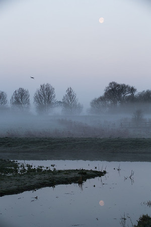 Mist and moon at Middle Fen - 7 April 2015