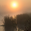 Misty morning on the Great Ouse - 4