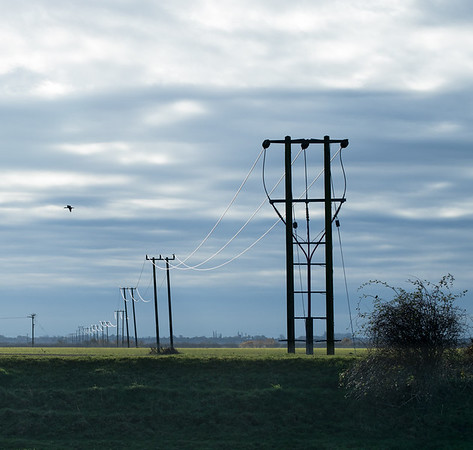 Luminous power lines, River Great Ouse