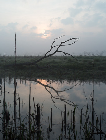Middle Fen - Over - 8 April 2015