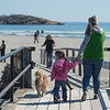 DESI SMITH/STAFF Photo   Alaina Peterson of Gloucester and her daughter Halle Bouchie 3,cross over the foot bridge at Good Harbor Beach with their dogs Grizzly and Brady to join others that shared the same idea on a sunny Saturday morning in Gloucester.  April 12,2014