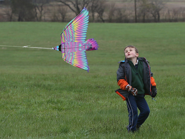 Kite Day EKITES