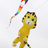 MIKE SPRINGER/Staff photo<br /> A tiger-shaped kite flies Saturday during the annual Kite Day at Cogswell's Grant in Essex.<br /> 4/14/2018