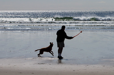 MIKE SPRINGER/Staff photo Rob McNamara of Gloucester prepares to throw a ball as his dog Paco waits eagerly to fetch it at Good Harbor Beach. 4/18/2018