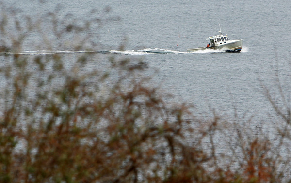 Rockport: A lobster boat returns to Rockport Harbor Thursday afternoon.  Mary Muckenhoupt/Gloucester Daily Times