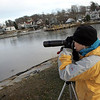 Gloucester: Susan Hochgraf looks out at Smith's Cove while doing some bird watching Friday afternoon. In Smith's cove Hochgraf had sighted two mute swans, bufflehead ducks, a common ider and a red-breasted merganser.  Mary Muckenhoupt/Gloucester Daily Times