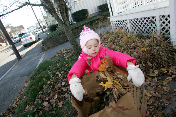 "Gloucester: Zoe Ross, 4, fills a bag of leaves while helping her grandmother, Doreen Ross, clean up her yard on Washington Street Thursday morning.  Doreen would rake the leaves into little pile and Zoe would pick them up and put them in the bag.  ""She's a big help,"" said Doreen. Mary Muckenhoupt/Gloucester Daily Times"
