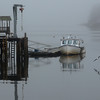 """MIKE SPRINGER/Staff photo <br /> A seagull skims over the surface of the water as the fishing boat """"The Mrs."""" is tied up to the docks on a foggy morning Tuesday in Manchester Harbor."""