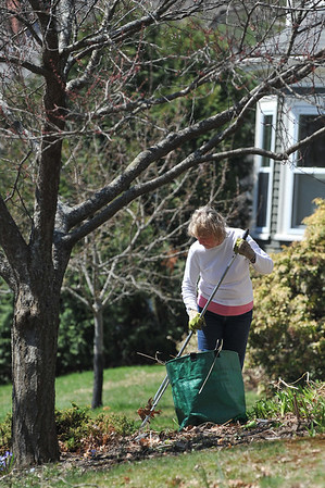 DESI SMITH/STAFF Photo      Beth Cairns rakes some leaves and debre from her flower beds, as she starts some spring clean up and planting at her home on Martin Street in Essex Saturday morning.  April 19,2014