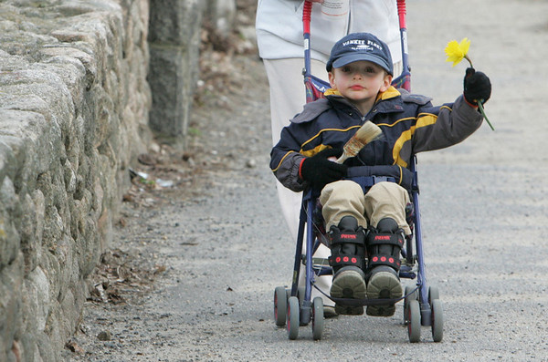 Gloucester: David O'Brien, 3, of Gloucester holds out the daffodil he picked with his mother Samantha as the two were out for a walk to enjoy the nice weather Friday evening. Mary Muckenhoupt/Gloucester Daily Times
